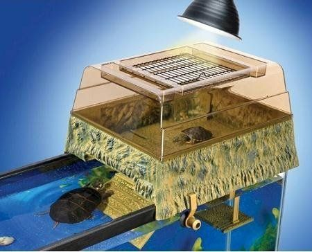 Aquarium Filters – Need to Learn Which Type to UseAquarium Filters – Need to Learn Which Type to Use